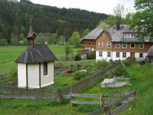 2009_2WM_Schwarzwald-9