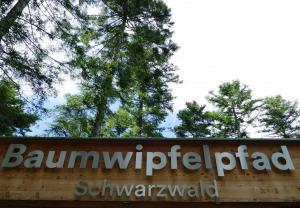2017 06 zweiter weg bad wildbad 101